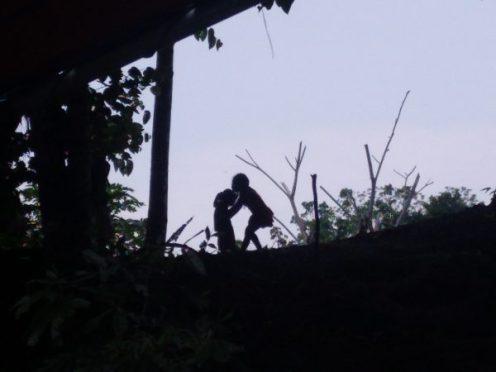 amazonia-amazonas-rio napo