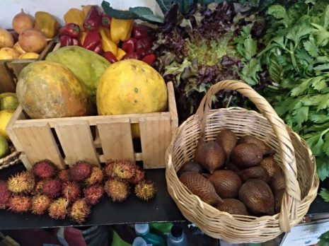 organic-products-organicos-food